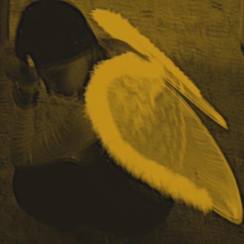 Eva Kade - Angel