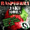 Raspberry [Original mix]