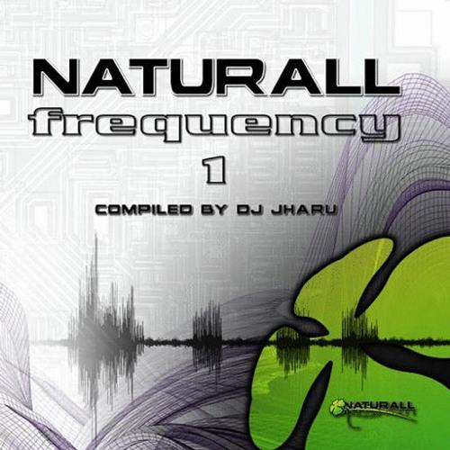 Tikal - Spaceship