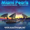 Miami Pearls - Lexx WMC 2010 Selection - live @ Scoutlounge