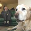 Meneer Drenth heeft al 60 jaar een blindegeleidehond