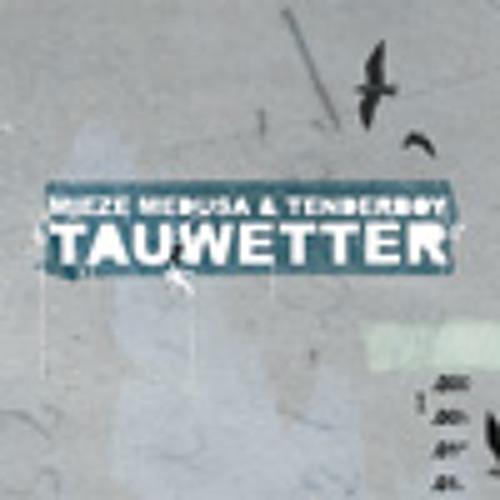 mieze medusa & tenderboy - Ich bin Fan - Tauwetter 2009 (Vinyl, CD, mp3 Release)