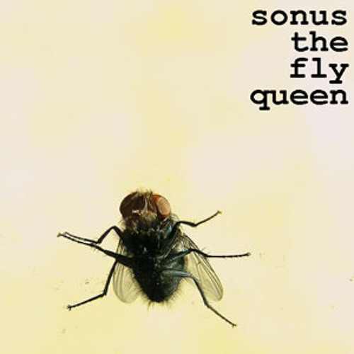 The Fly Queen