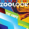 Diva Heartbeats (Jean-Michel Jarre vs The Knife)