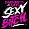 Canción Preparada - Sexy Bitch - David Guetta