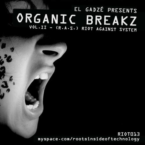 013. Organic Breakz Vol.2 - [R.A.S.] Riot Against System