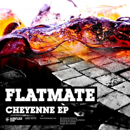 Flatmate - Arctic [Airflex Labs]