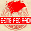 Seeing Red Radio: May Day 09 Returns 2.6