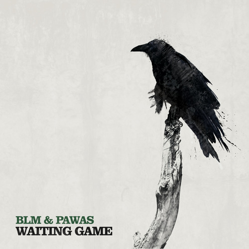 Waiting game (Original mix) - BLM & Pawas