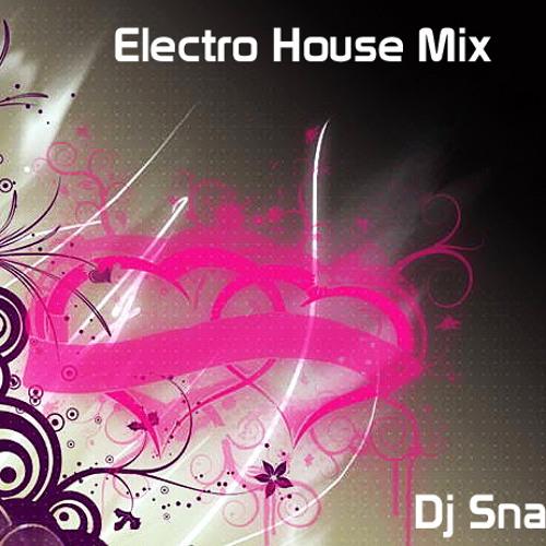 Dj Snaz Ft. Various - ElectroHouse Mix