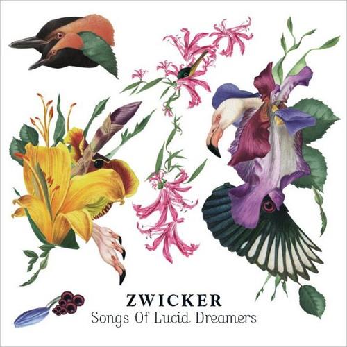 Zwicker - Who You Are feat. Heidi Happy
