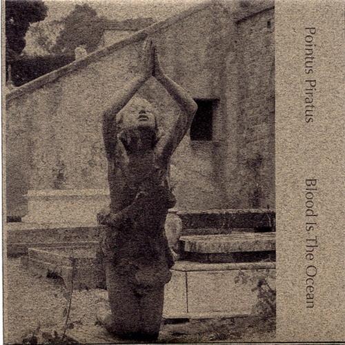 Pointus Piratus - Blood Is The Ocean (samplefile)