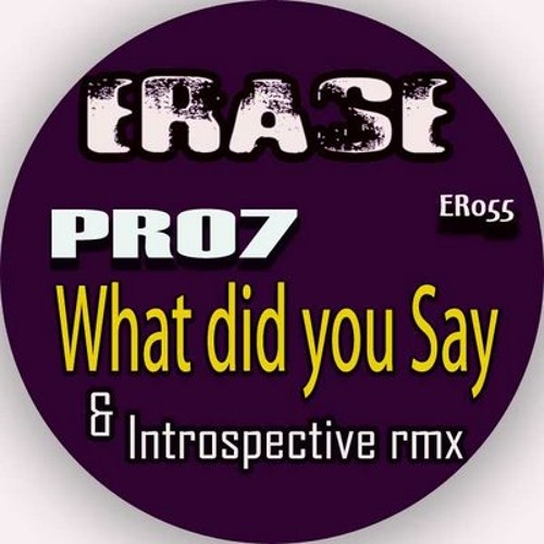 Pro7 - What Did You Say