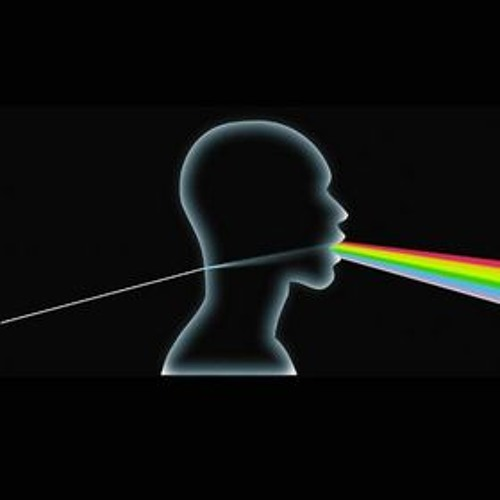 Pink Floyd - Run Like Hell (Shok's Dark Side of The Wall mix)