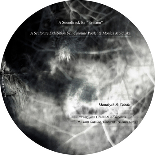 9.34mn Outside (Unborn) - Evasion Exhibition Soundtrack (for a Cocoon installation) (2010)