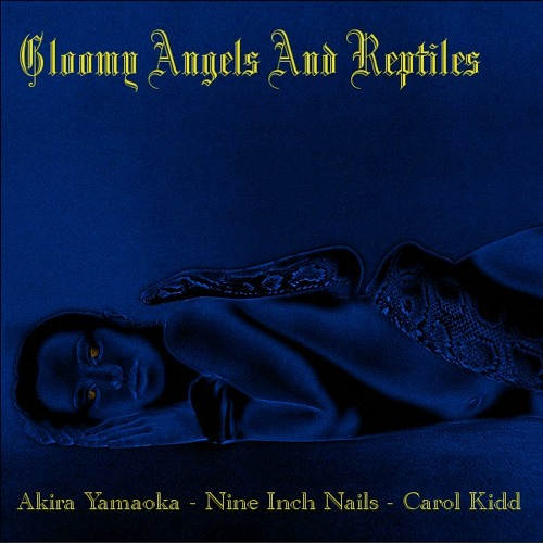 VDJ - Gloomy Angels and Reptiles (Akira Yamaoka and NIN vs Carol Kidd)