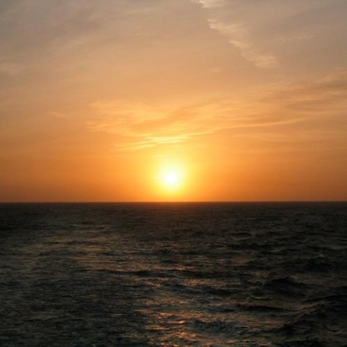 Caribou - Sun (noiseflowr organistic mix)