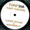 Tone396 - Bob Marley vs Lionel Richie - Easy Waiting (Dreadtone Mix)