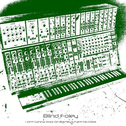 Blind Foley - I Ain't Gonna Work On Barney's Farm No More (320kbps)