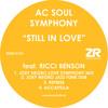 AC Soul Symphony 'Still In Love' (Joey Negro Love Symphony Mix)