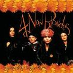 What s up 4 Non Blondes