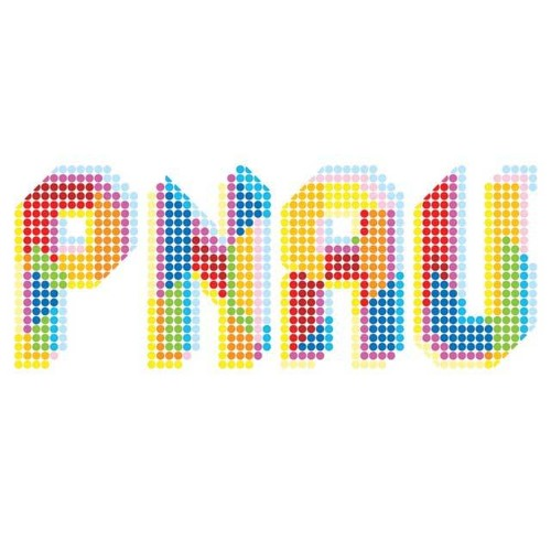 Pnau - With You Forever (FM Attack remix)