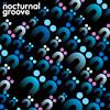 Gramophonedzie - Brazilian : Nocturnal Groove