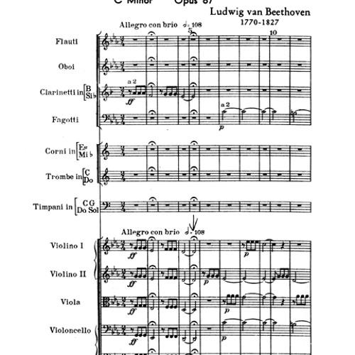 Beethoven Sym 5 1st Movement