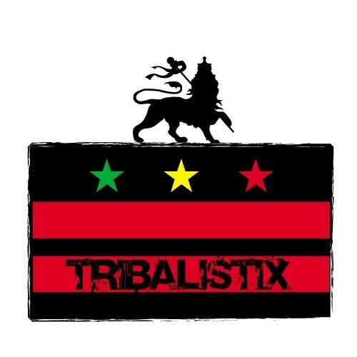 Tribalistix Sound - In the Mood (Hopeton James dubplate)