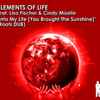 Into My Life (Vamp Mix) - Elements of Life ft. Lisa Fischer