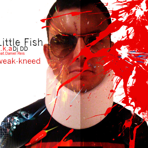 Little Fish aka DJ DD - Back Again