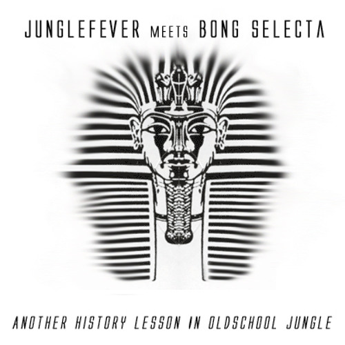 Junglefever meets Bong Selecta- Another History Lesson In Oldschool Jungle