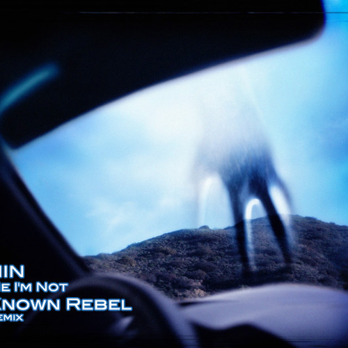 Nine Inch Nails - Me I'm Not (Known Rebel Remix)
