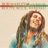 Lively Up Yourself - Bob Marley - Bombay Dub Orchestra Remix