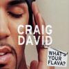 """""""Flava"""" Craig David (Todd Edwards unreleased dub)"""
