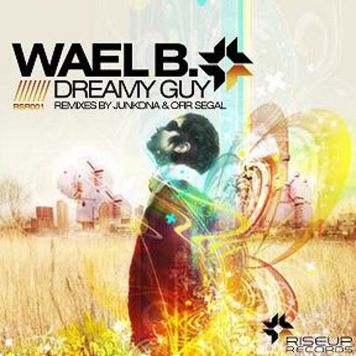 Dreamy Guy - OFIR SEGAL Rmx