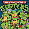 Teenage Mutant Ninja Turtles Theme ft Kevin Moore
