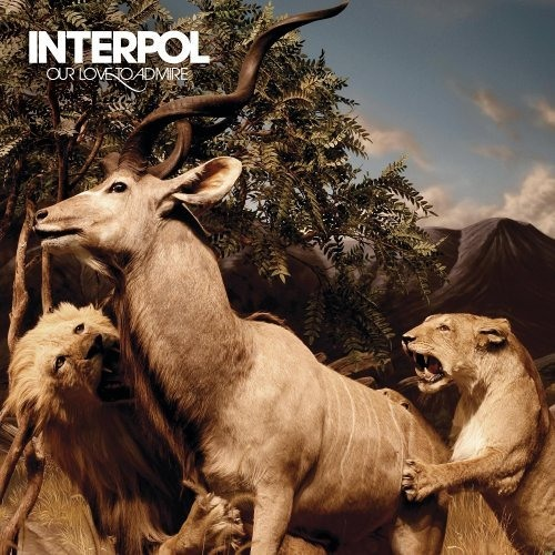 Interpol -Pioneer to the Falls-