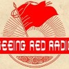 Seeing Red Radio: Paul Le Blanc on Socialism and Democracy 2.9