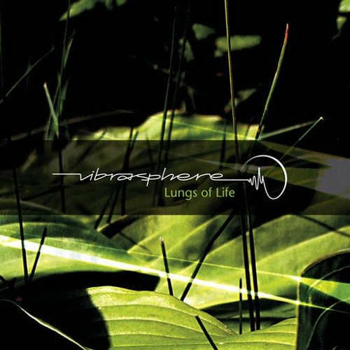 2008 Promotion Mix - Vibrasphere