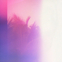 Blackbird Blackbird - Hawaii (Niva Remix)