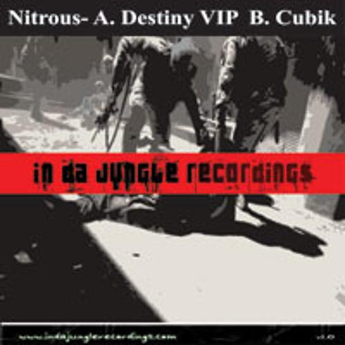 Destiny (VIP Mix)