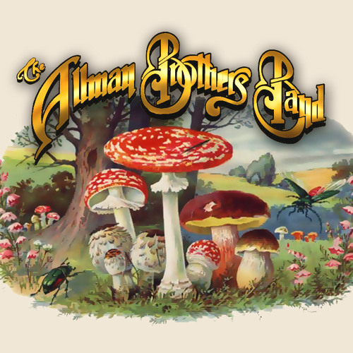 Loan Me A Dime - The Allman Brothers Band
