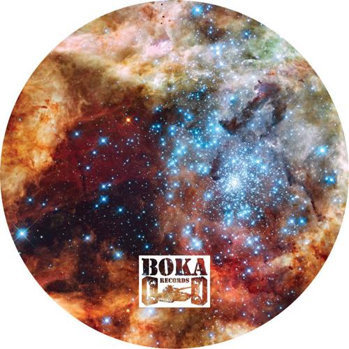 Innasekt - Cluster [BOKA030]