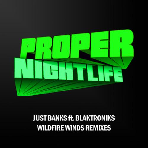 Wildfire Winds Remixes feat. Blaktroniks