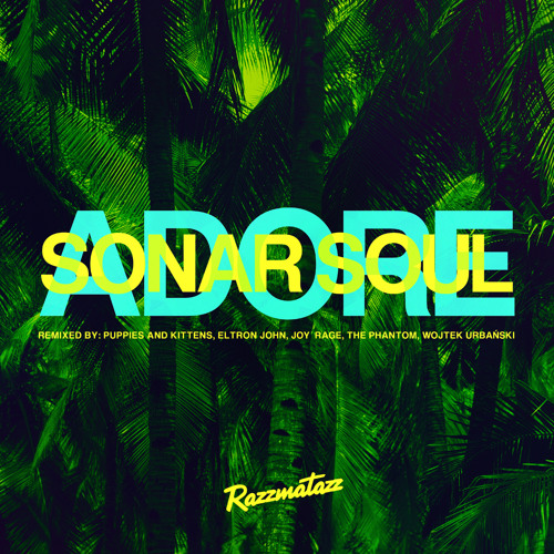 Sonar Soul - 'Adore' snippet