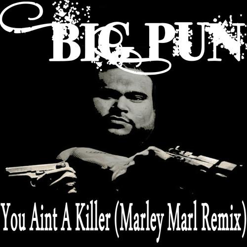 Big Punisher - You Aint A Killer (Marley Marl Remix Instrumental)