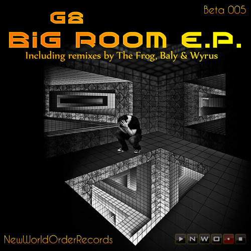 Big Room EP by G8