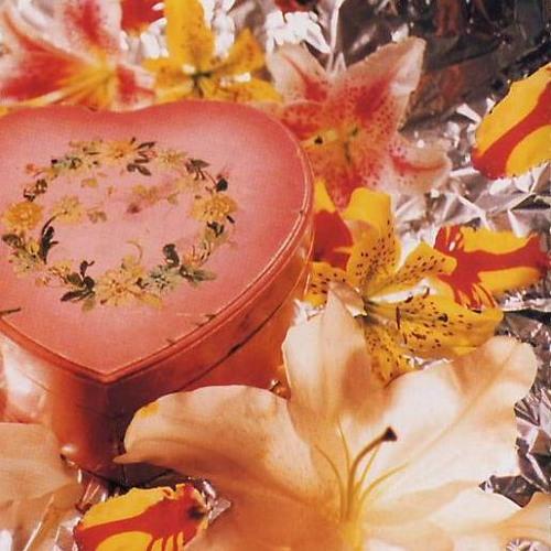 Nirvana - Heart shaped box (MNSN remix)