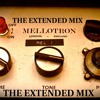 The Extended Mix Vol 7